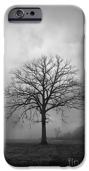 Dave Digital Art iPhone Cases - Bare Tree And Clouds BW iPhone Case by David Gordon