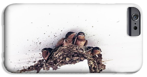 Barn Swallow Digital Art iPhone Cases - Barh Swallow Chicks In The Nest iPhone Case by Gail Campbell