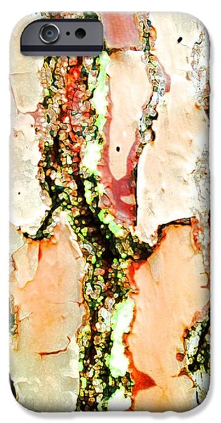 Abstractions iPhone Cases - Bark with an Accent iPhone Case by Barbie Corbett-Newmin