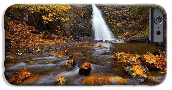 Fall iPhone Cases - Barking Dog Falls iPhone Case by Darren  White