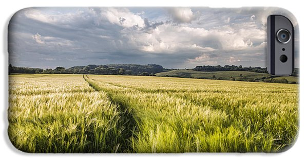 Agricultural iPhone Cases - Barley Field iPhone Case by Ian Hufton