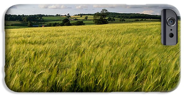 Field. Cloud iPhone Cases - Barley Field, Wales, United Kingdom iPhone Case by Panoramic Images