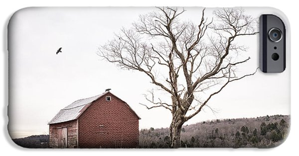 Old Barns iPhone Cases - barn and tree - New York State iPhone Case by Gary Heller
