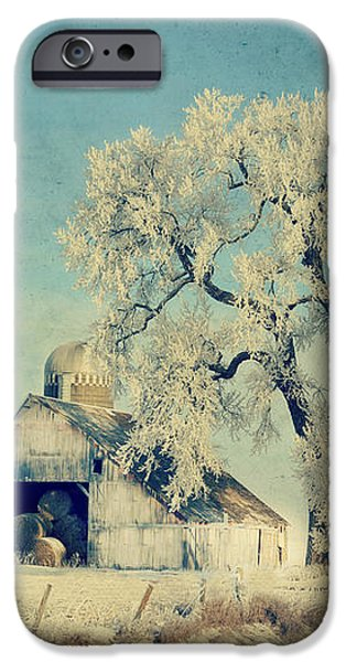 Barn Frosty Trees iPhone Case by Julie Hamilton