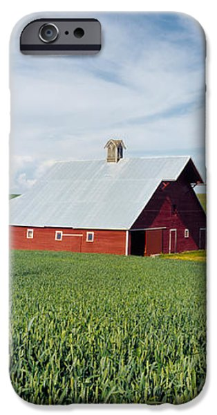 Agriculture iPhone Cases - Barn In A Wheat Field, Washington iPhone Case by Panoramic Images