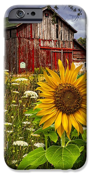 Old Barn iPhone Cases - Barn Meadow Flowers iPhone Case by Debra and Dave Vanderlaan