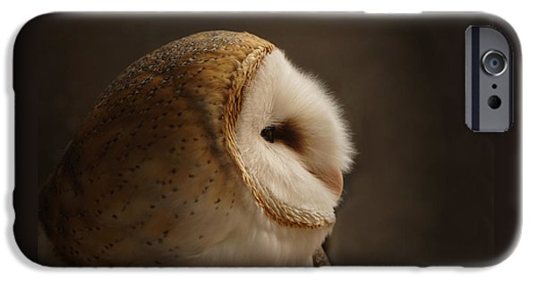 Owls iPhone Cases - Barn Owl 3 iPhone Case by Ernie Echols