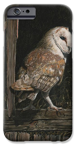Ornithology iPhone Cases - Barn Owl in the Old Barn iPhone Case by Rob Dreyer AFC