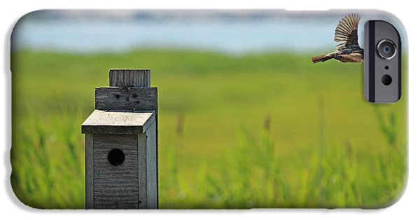 Barn Swallow Digital Art iPhone Cases - Barn Swallow - A Contest Runner Up iPhone Case by Jake Danishevsky