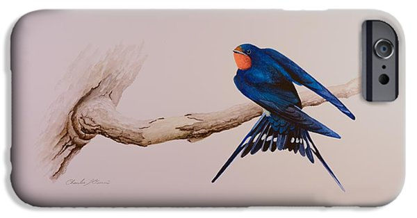Barn Swallow Paintings iPhone Cases - Barn Swallow iPhone Case by Charles Owens