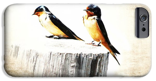Barn Swallow iPhone Cases - Barn Swallows iPhone Case by TN Fairey