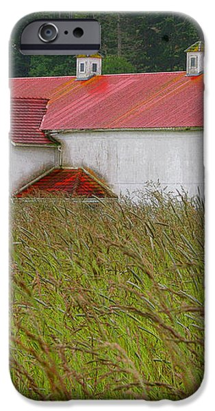 Barn with Blue Door iPhone Case by Art Block Collections