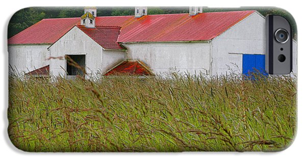 Red Roofed Barn iPhone Cases - Barn with Blue Door iPhone Case by Art Block Collections