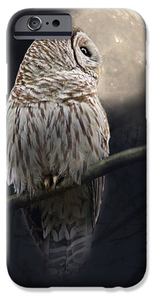 Barred Owl iPhone Cases - Barred Owl Moon Glow iPhone Case by Jennie Marie Schell