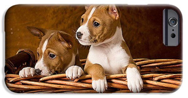 Puppy Iphone Case iPhone Cases - Basenji Puppies iPhone Case by Marvin Blaine