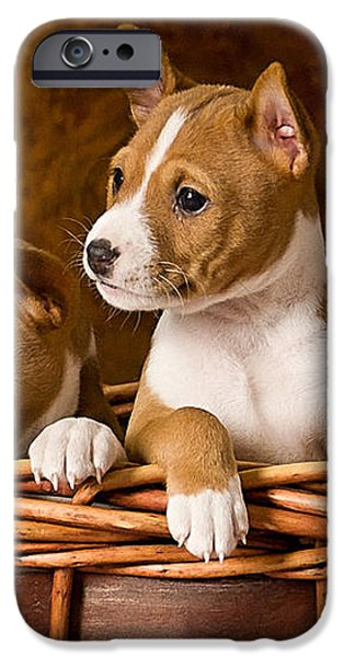 Basenji Puppies iPhone Case by Marvin Blaine