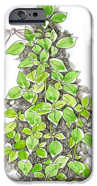 Sepia Ink Drawings iPhone Cases - Basil and Dragonfly iPhone Case by Cathie Richardson