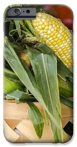Sweet Corn Farm iPhone Cases - Basket Farmers Market Corn iPhone Case by Carolyn Marshall