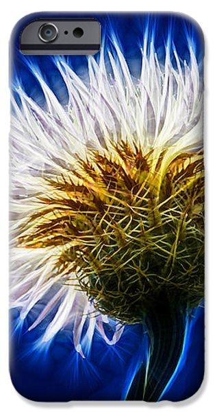 Basket Flower Inner Beauty iPhone Case by Nikki Marie Smith