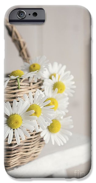 Basket iPhone Cases - Basket Full of Summer Daisys iPhone Case by Edward Fielding