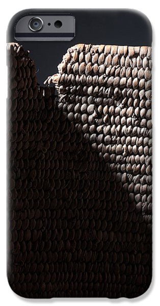 Best Sellers -  - Basket iPhone Cases - Basket of Mystery iPhone Case by Joe Kozlowski