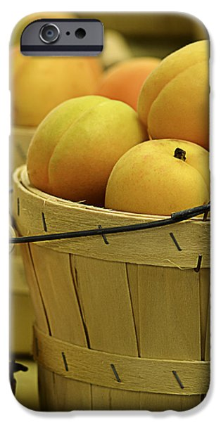 Baskets of Apricots Squared iPhone Case by Julie Palencia