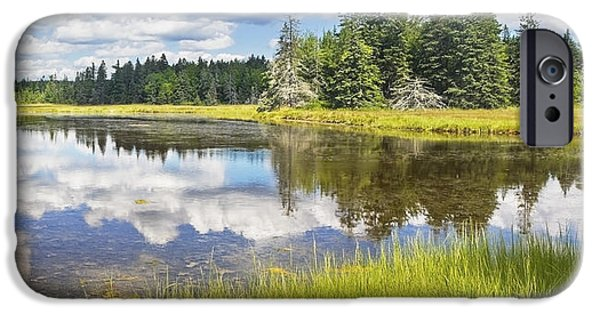 Wetlands iPhone Cases - Bass Harbor Marsh - Summer - Acadia National Park - Maine iPhone Case by Keith Webber Jr