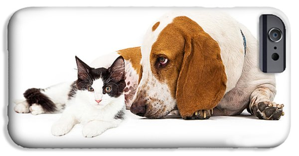 Domestic Animal iPhone Cases - Basset Hound Dog And Kitten iPhone Case by Susan  Schmitz