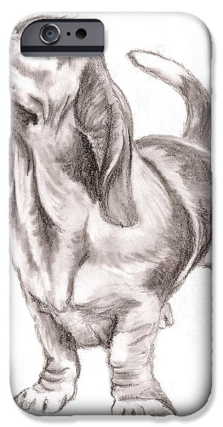 Minnesota Drawings iPhone Cases - Basset Hound Dog iPhone Case by Nan Wright