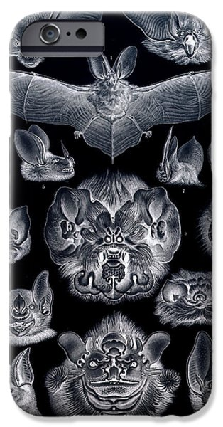Bat Digital Art iPhone Cases - Bats Bats and More Bats Inverted iPhone Case by Unknown