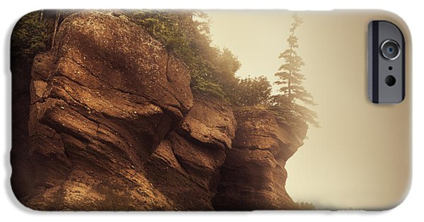 Flowerpot iPhone Cases - Bay of Fundy iPhone Case by Magda  Bognar