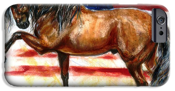 4th July Paintings iPhone Cases - Bay Patriot iPhone Case by Tere Goldstein