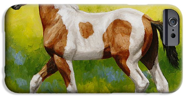 White Horses iPhone Cases - Bay Pinto Foal iPhone Case by Crista Forest