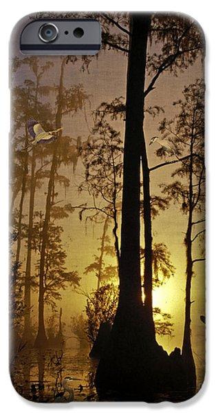 Canoe Digital iPhone Cases - Bayou Sunrise iPhone Case by Lianne Schneider