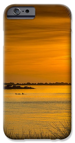 Sea View iPhone Cases - Bayport Dolphins iPhone Case by Marvin Spates