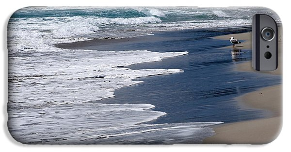 Island Stays iPhone Cases - BayWatcher - A seagull waits at shore of Son Bou beach fishing time arrive iPhone Case by Pedro Cardona