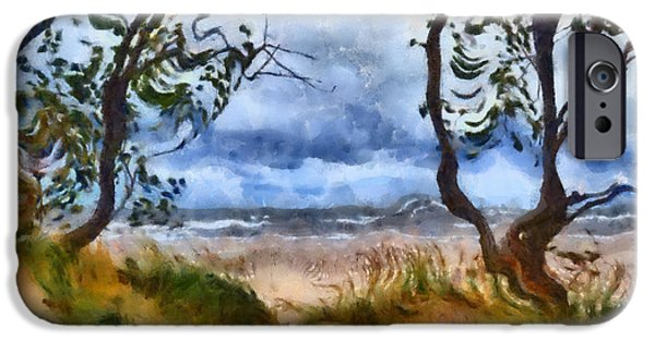 Michelle iPhone Cases - Beach and Trees iPhone Case by Michelle Calkins