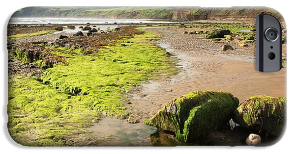 Recently Sold -  - Alga iPhone Cases - Beach at Robin Hoods Bay iPhone Case by Deborah Benbrook