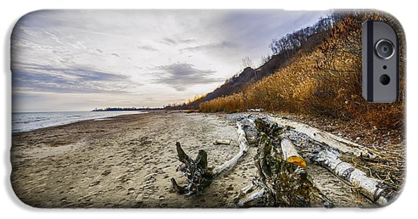 Beach Landscape iPhone Cases - Beach at Scarborough Bluffs iPhone Case by Elena Elisseeva