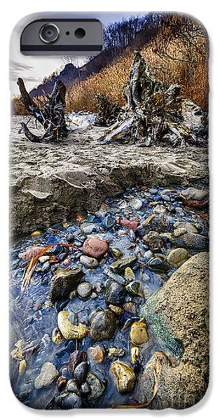 Beach brook at Scarborough Bluffs iPhone Case by Elena Elisseeva