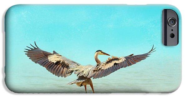 Sea Birds iPhone Cases - Beach Dancing iPhone Case by Jai Johnson