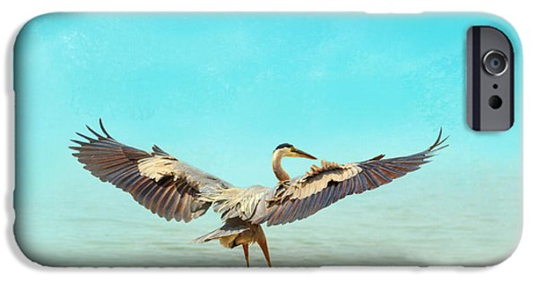 Sea Birds iPhone Cases - Beach Dancing iPhone Case by Jai Johnson