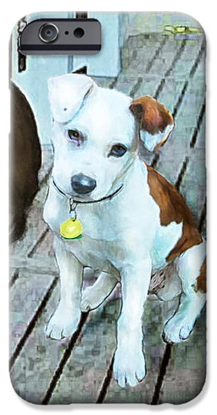 Dogs Digital Art iPhone Cases - Beach Dog 1 iPhone Case by Jane Schnetlage