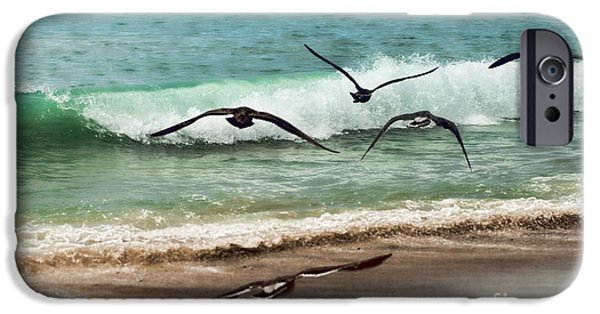 Sea Birds iPhone Cases - Beach Flight iPhone Case by Peggy J Hughes