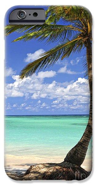 Beach of a tropical island iPhone Case by Elena Elisseeva