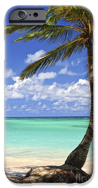Scenery iPhone Cases - Beach of a tropical island iPhone Case by Elena Elisseeva
