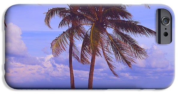 Florida Pyrography iPhone Cases - Beach Palms iPhone Case by Dan Hilsenrath