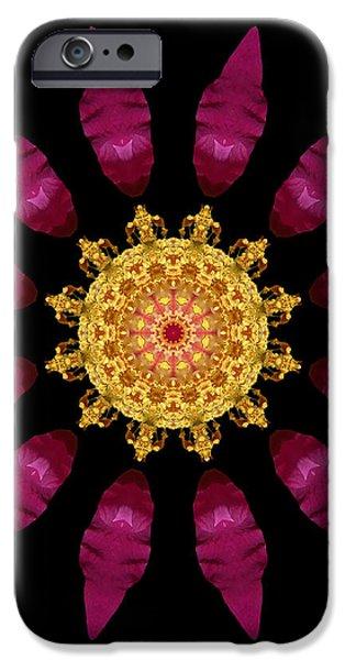 Beach Rose IV Flower Mandala iPhone Case by David J Bookbinder
