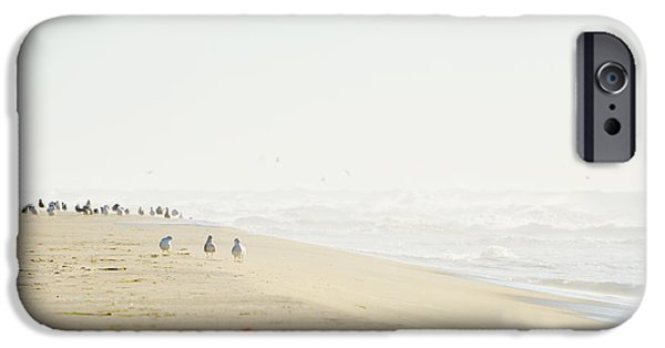 Beach iPhone Cases - Beach and Birds Landscape iPhone Case by Anahi DeCanio - ArtyZen Studios