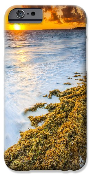 Best Sellers -  - Sea iPhone Cases - Beach Sunrise iPhone Case by Sebastian Musial